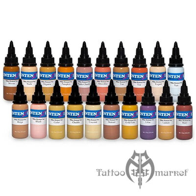 MIKE DEMASI THE PALETTE TATTOO INK SET - 20 color